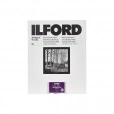 Fotopopierius Ilford MG DELUXE pearl 24x30.5cm / 10 lapų