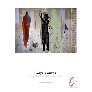 Hahnemühle Goya Canvas 3