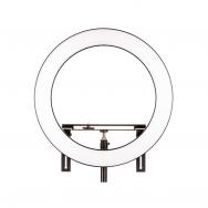 Šviestuvas Fomei LED Ring SMD 32W